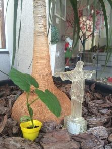 Natal: Jesus + Papai Noel + Árvore de Natal